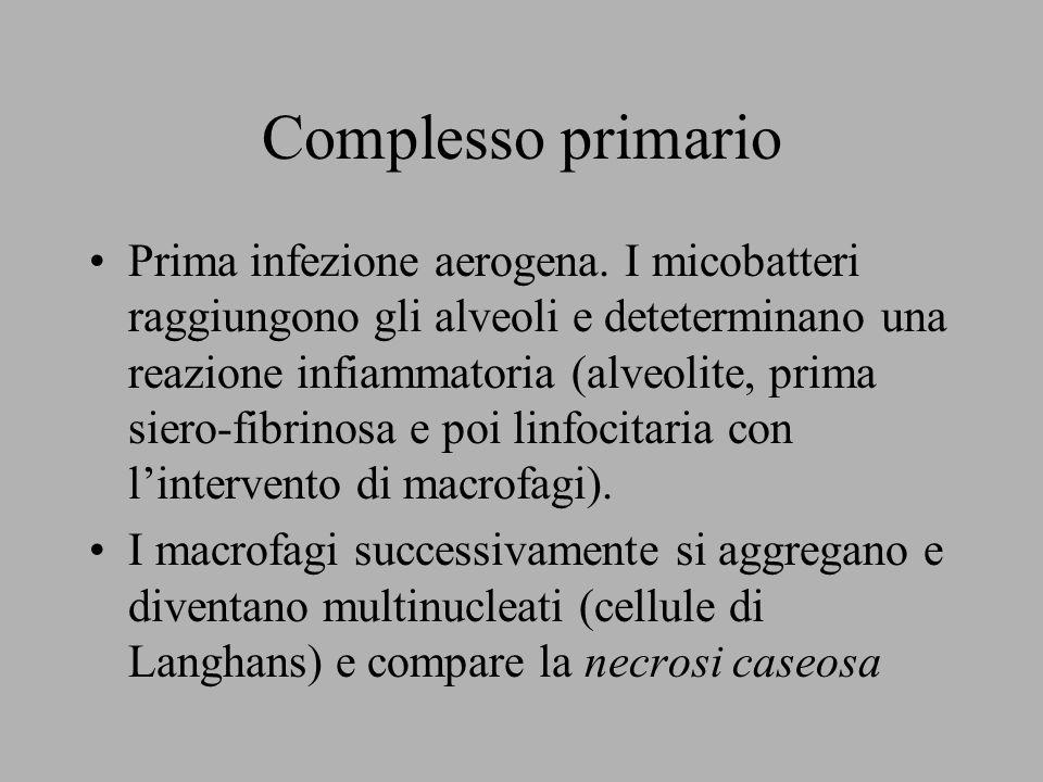 Complesso primario