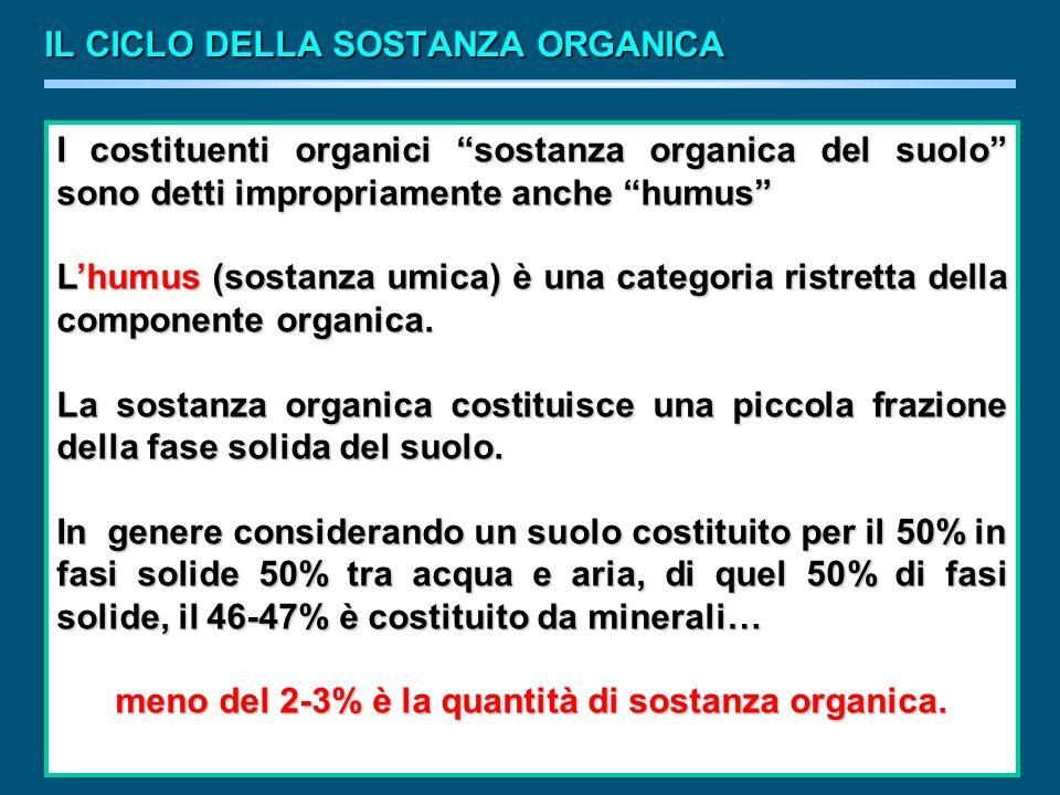 meno del 2-3% è la quantità di sostanza organica.
