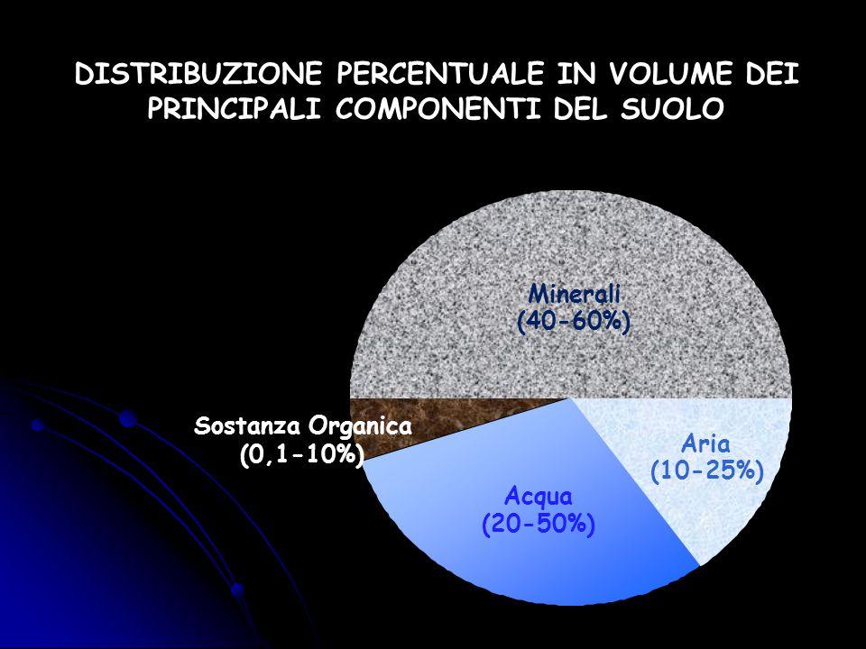 DISTRIBUZIONE PERCENTUALE IN VOLUME DEI PRINCIPALI COMPONENTI DEL SUOLO
