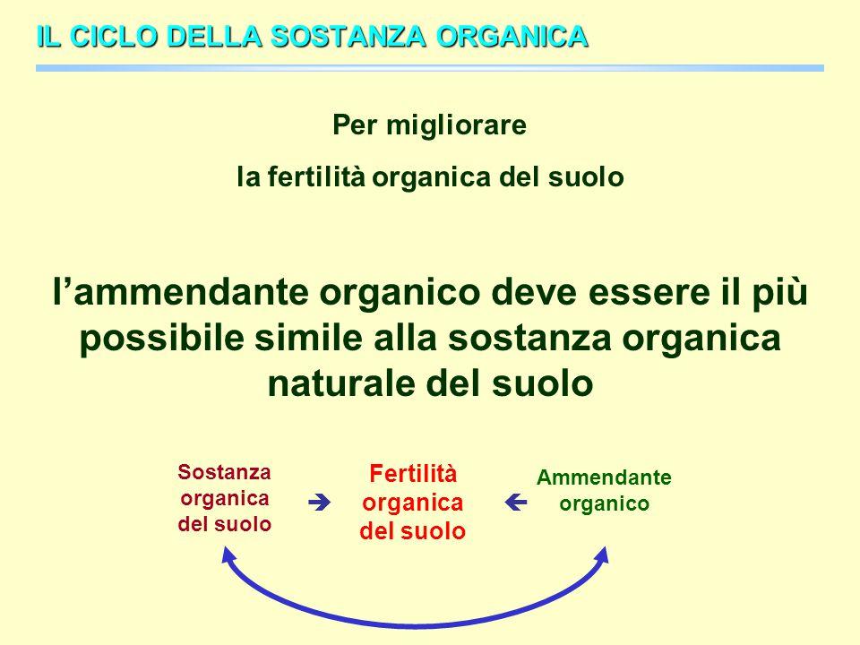 la fertilità organica del suolo