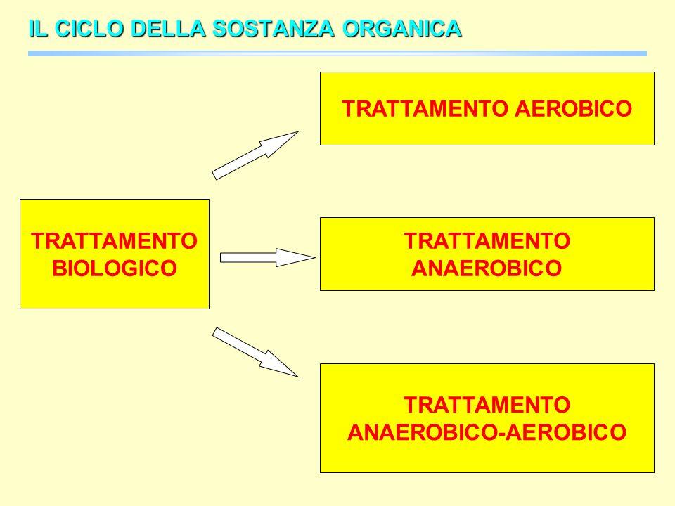 TRATTAMENTO BIOLOGICO TRATTAMENTO ANAEROBICO