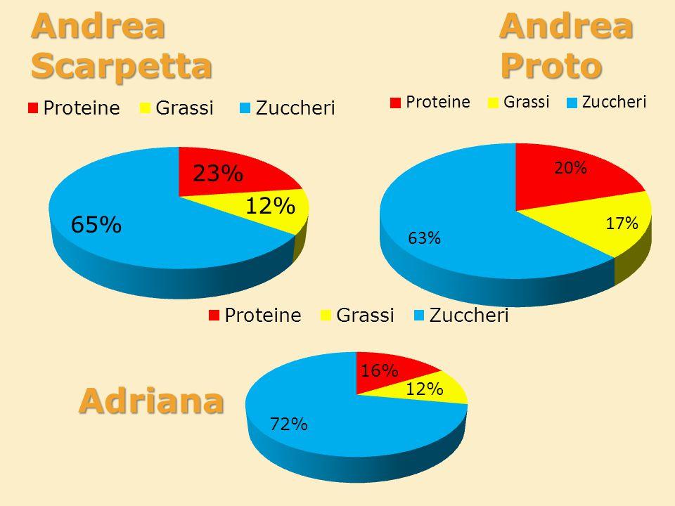 Andrea Andrea Scarpetta Proto Adriana