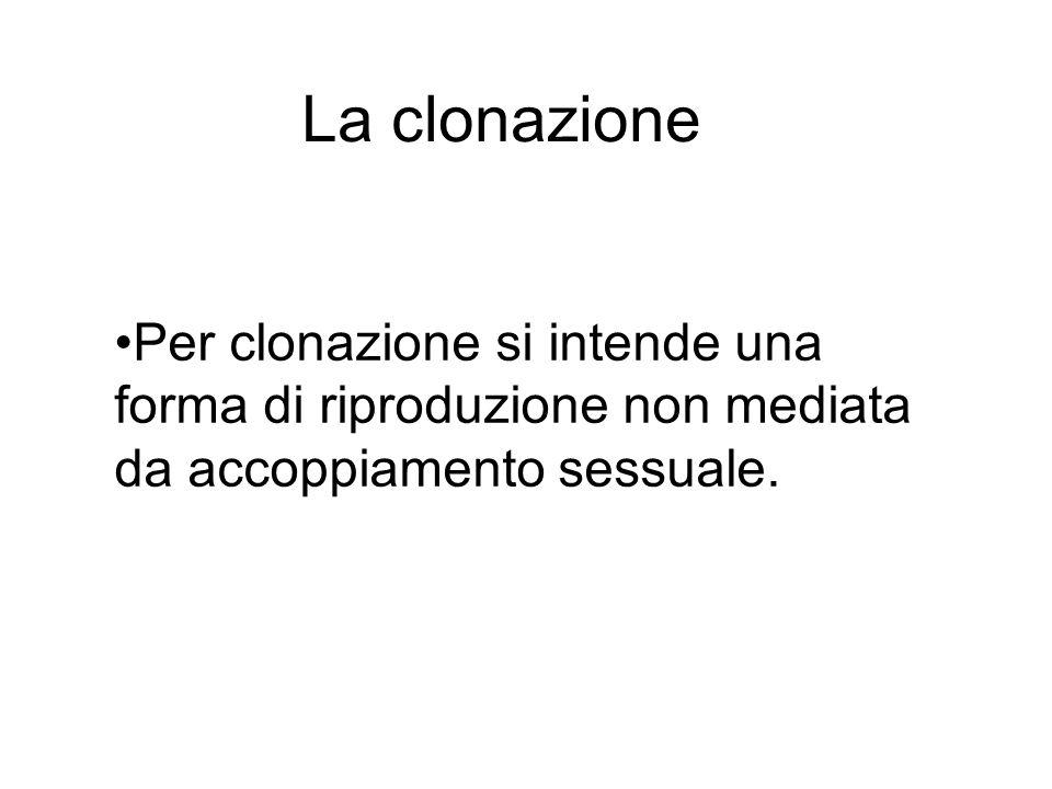 La clonazione Per clonazione si intende una forma di riproduzione non mediata da accoppiamento sessuale.