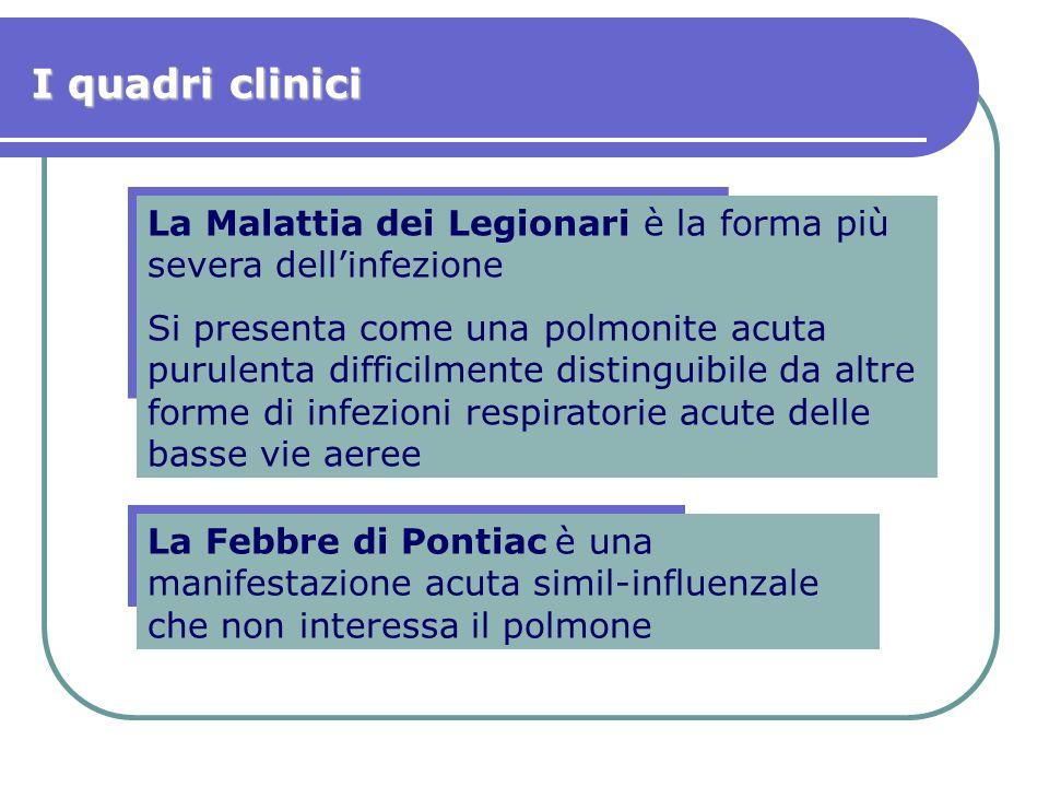 I quadri clinici La Malattia dei Legionari è la forma più severa dell'infezione.