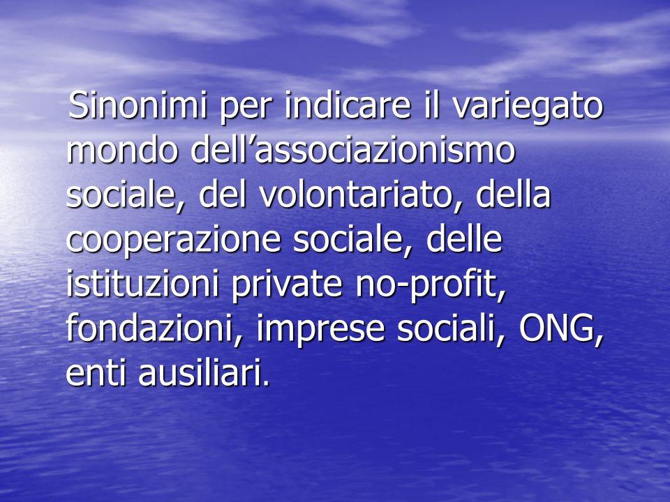 Sinonimi per indicare il variegato mondo dell'associazionismo sociale, del volontariato, della cooperazione sociale, delle istituzioni private no-profit, fondazioni, imprese sociali, ONG, enti ausiliari.