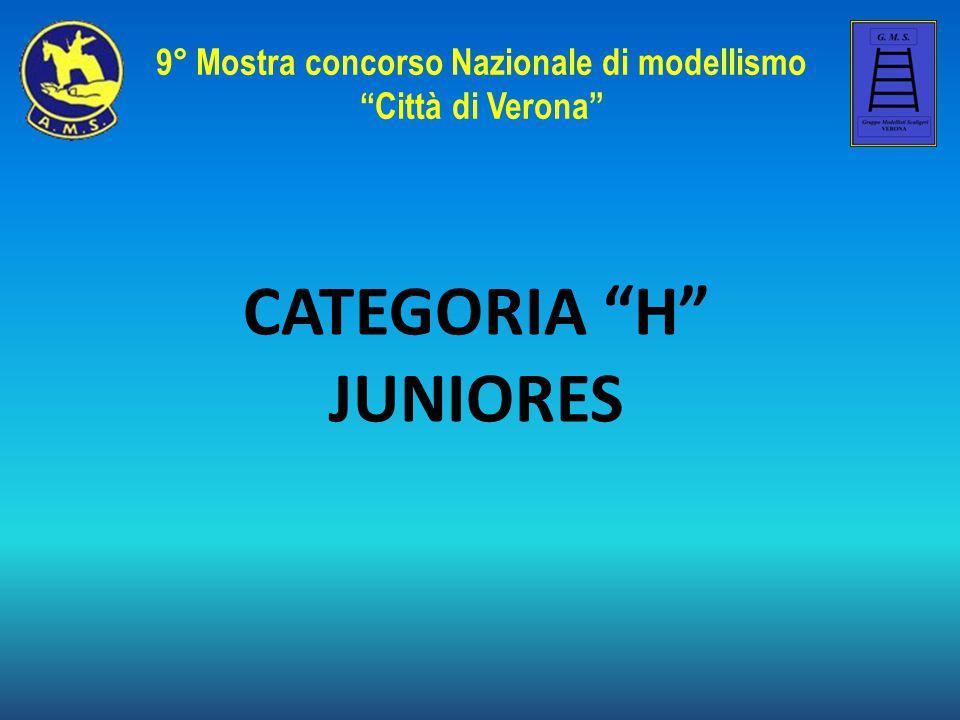 9° Mostra concorso Nazionale di modellismo
