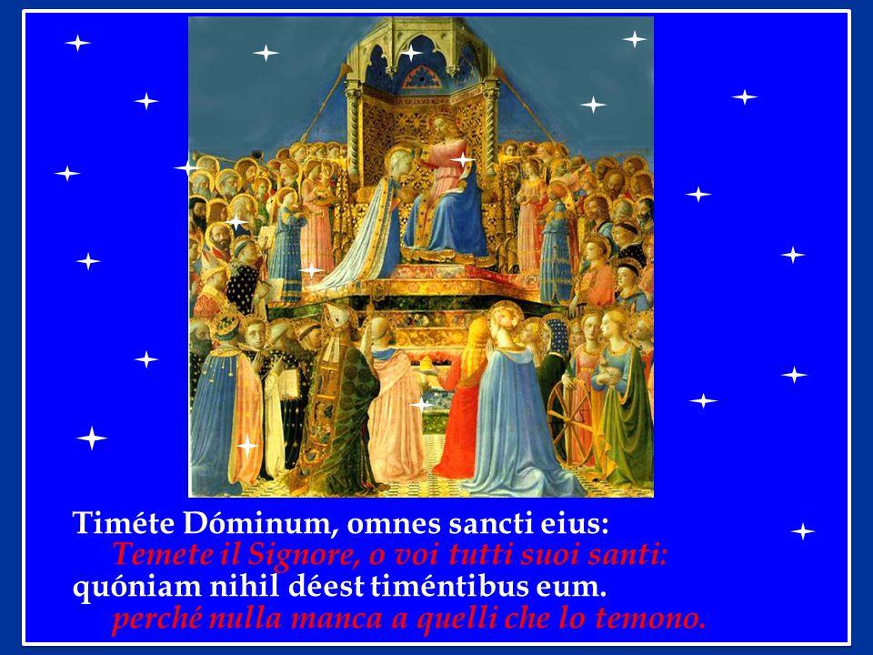 Timéte Dóminum, omnes sancti eius:
