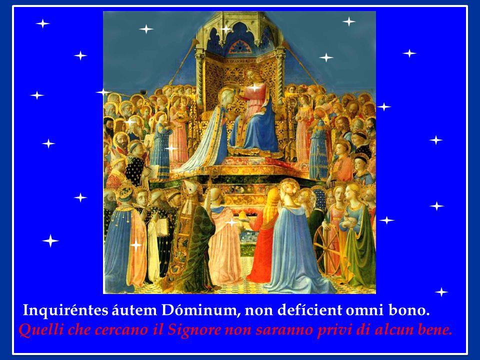 Inquiréntes áutem Dóminum, non defícient omni bono.