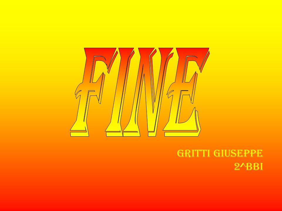 FINE Gritti Giuseppe 2^bbi