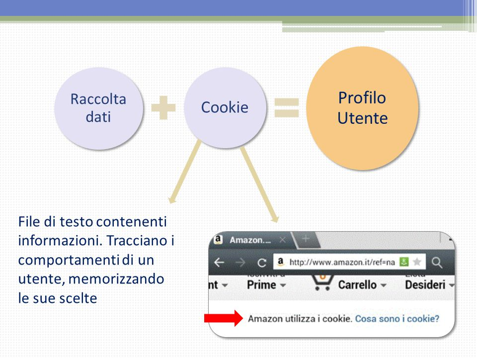 Profilo Utente Cookie Raccolta dati
