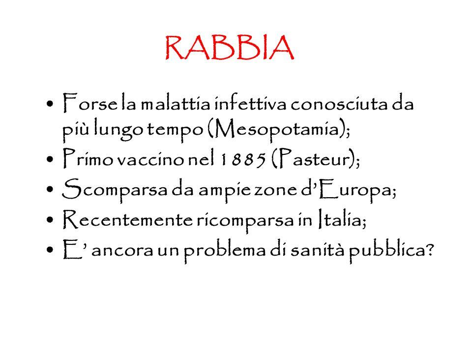 RABBIA Forse la malattia infettiva conosciuta da più lungo tempo (Mesopotamia); Primo vaccino nel 1885 (Pasteur);