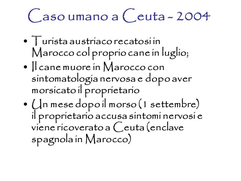 Caso umano a Ceuta - 2004 Turista austriaco recatosi in Marocco col proprio cane in luglio;