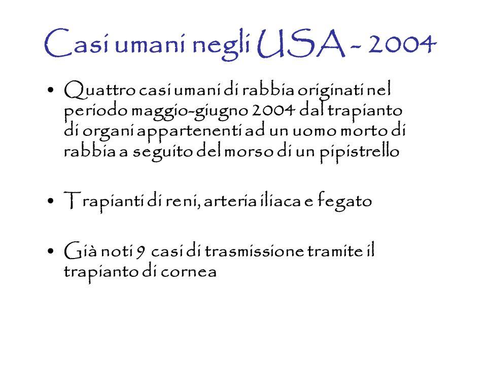 Casi umani negli USA - 2004