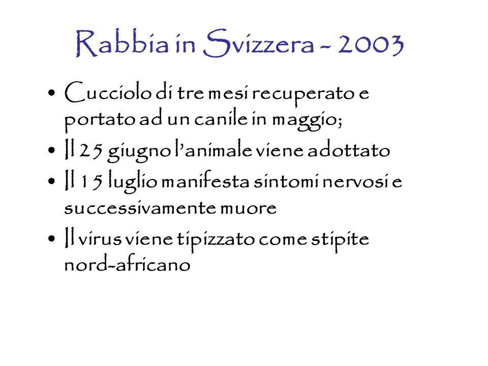 Rabbia in Svizzera - 2003 Cucciolo di tre mesi recuperato e portato ad un canile in maggio; Il 25 giugno l'animale viene adottato.