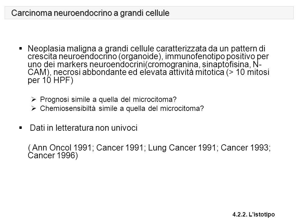 Carcinoma neuroendocrino a grandi cellule
