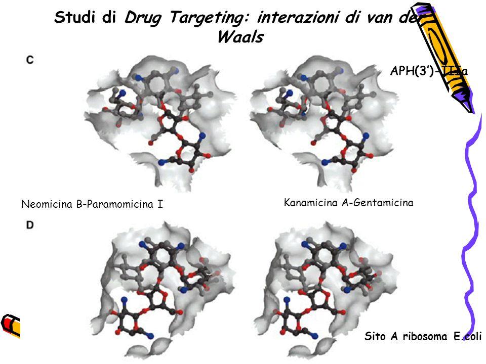 Studi di Drug Targeting: interazioni di van der Waals