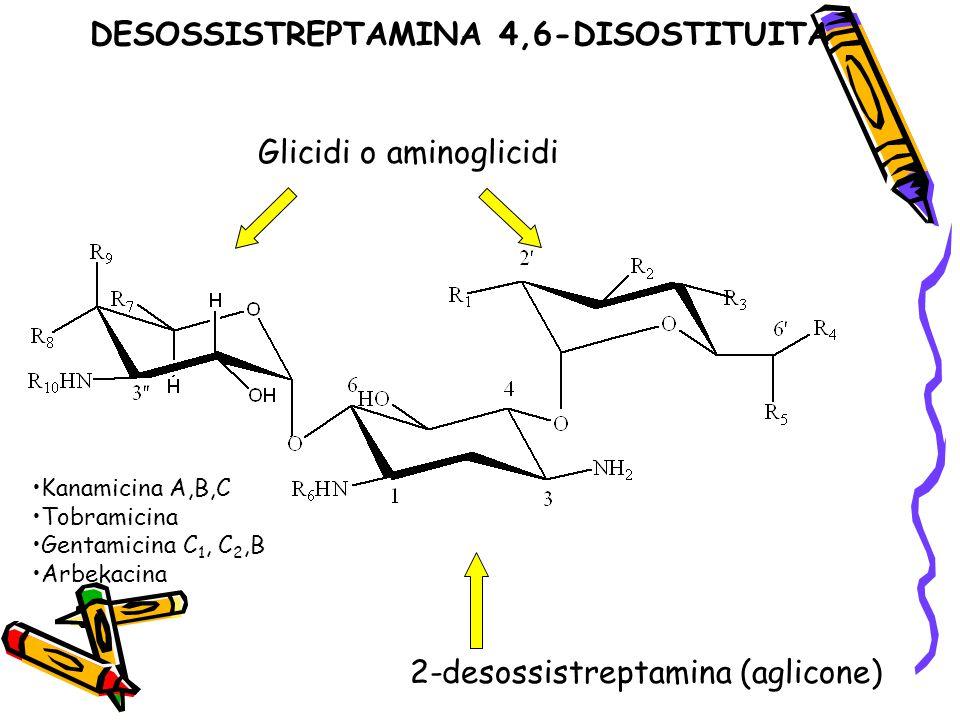 DESOSSISTREPTAMINA 4,6-DISOSTITUITA