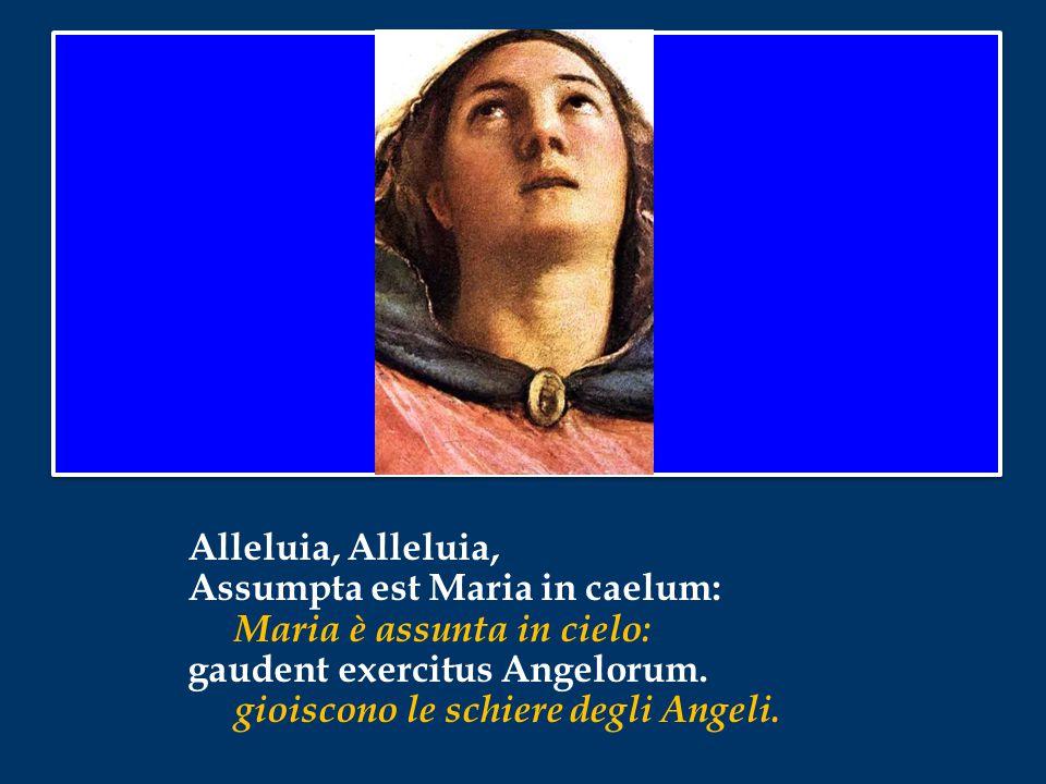 Alleluia, Alleluia, Assumpta est Maria in caelum: Maria è assunta in cielo: gaudent exercitus Angelorum.