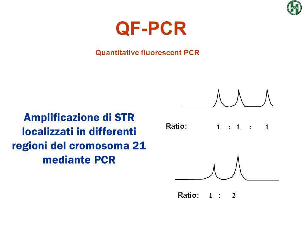 Quantitative fluorescent PCR