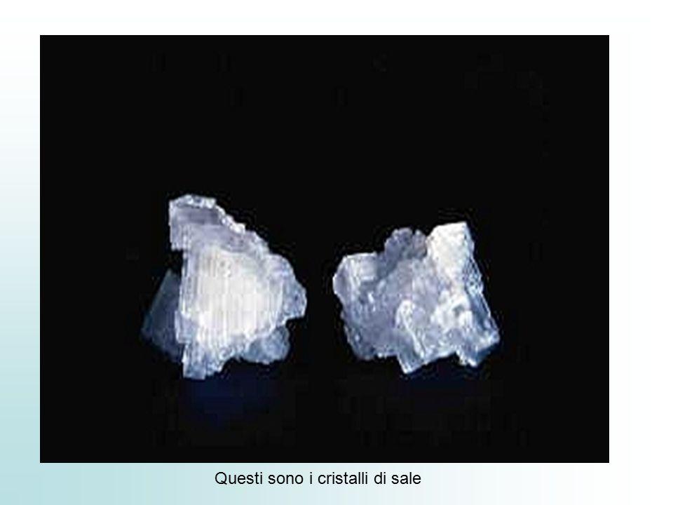 Questi sono i cristalli di sale