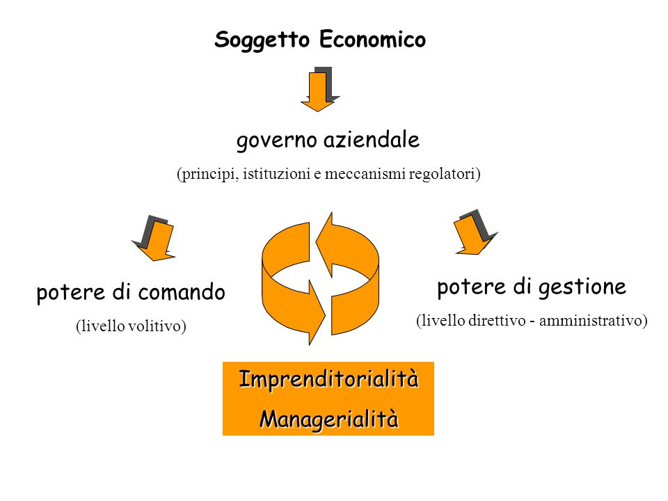 Soggetto Economico governo aziendale potere di gestione