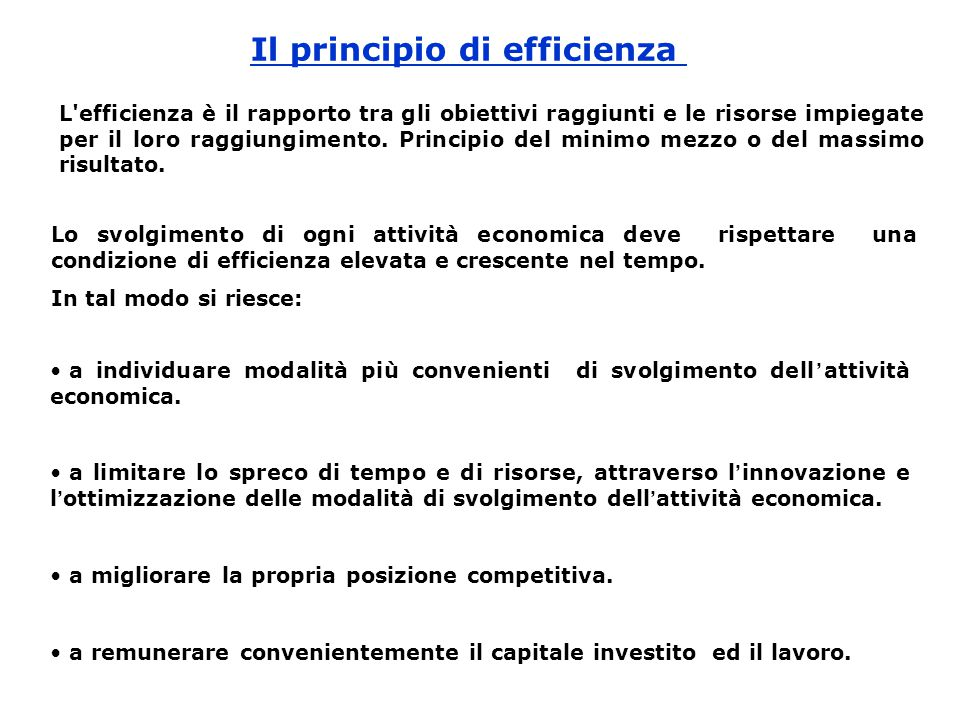 Il principio di efficienza