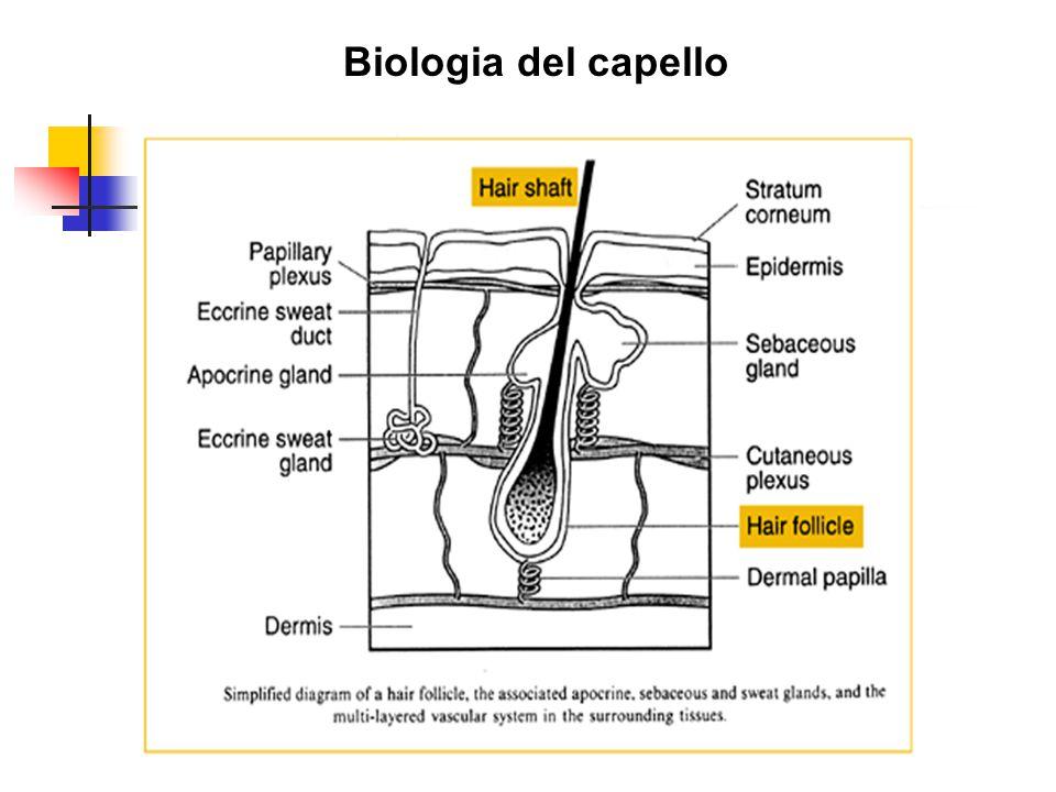 Biologia del capello