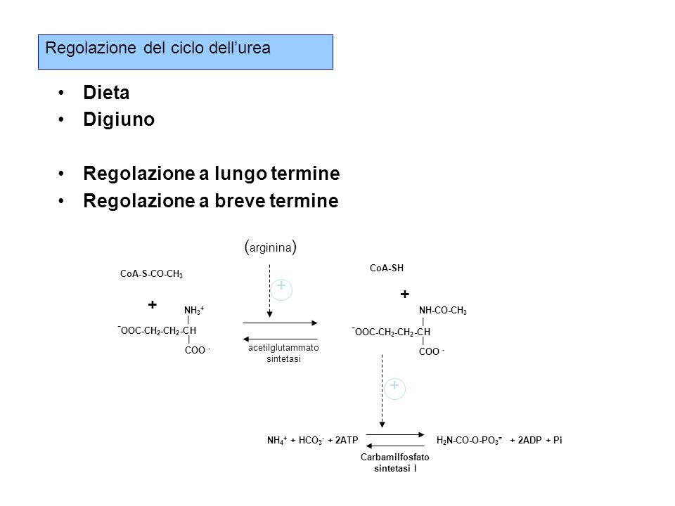 NH4+ + HCO3- + 2ATP H2N-CO-O-PO3= + 2ADP + Pi
