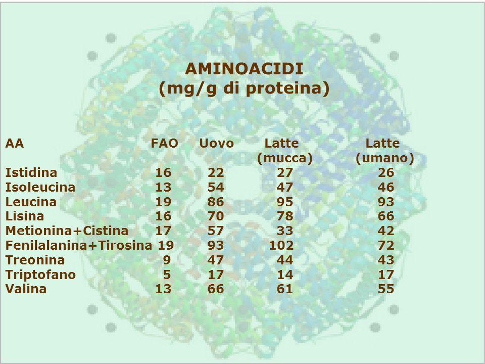 AMINOACIDI (mg/g di proteina)