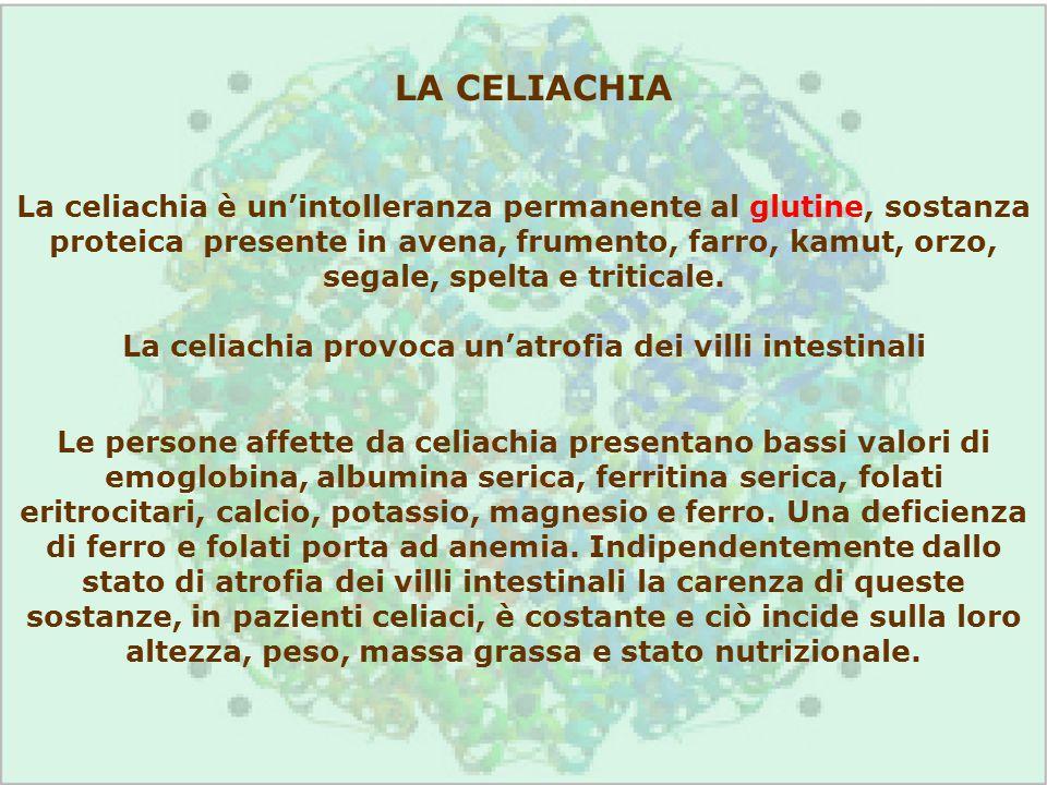 La celiachia provoca un'atrofia dei villi intestinali