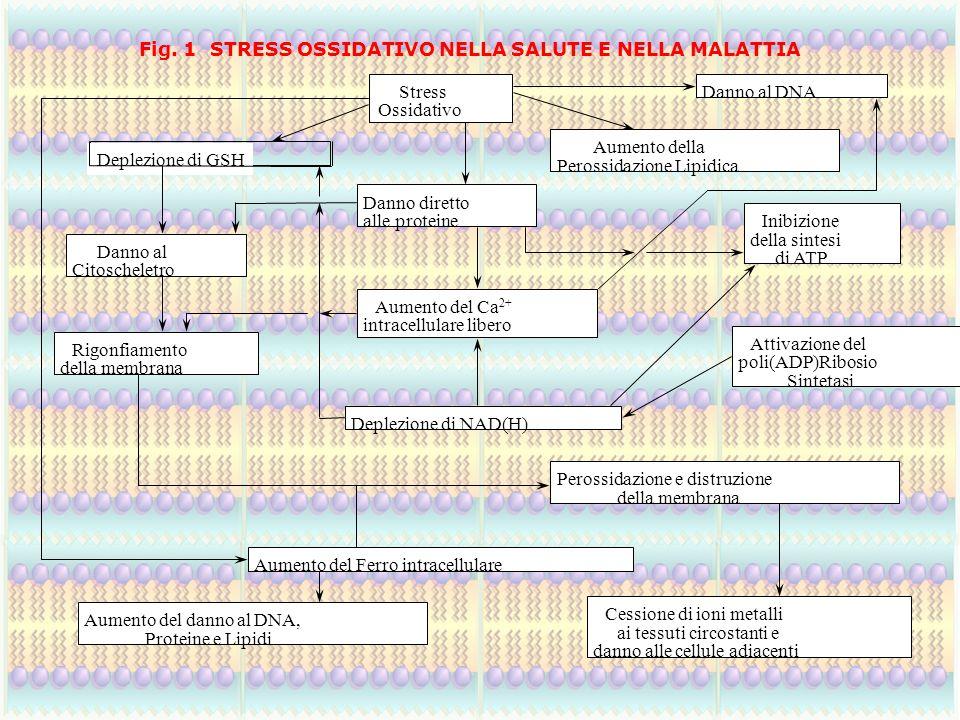 Fig. 1 STRESS OSSIDATIVO NELLA SALUTE E NELLA MALATTIA