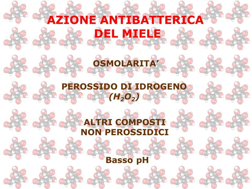 AZIONE ANTIBATTERICA DEL MIELE