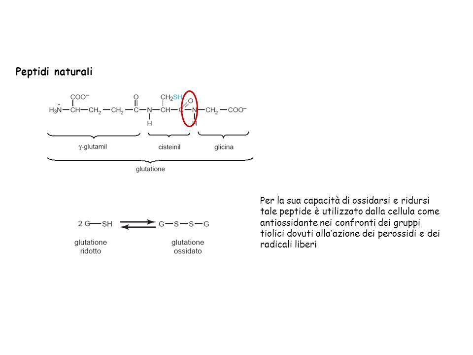 Peptidi naturali