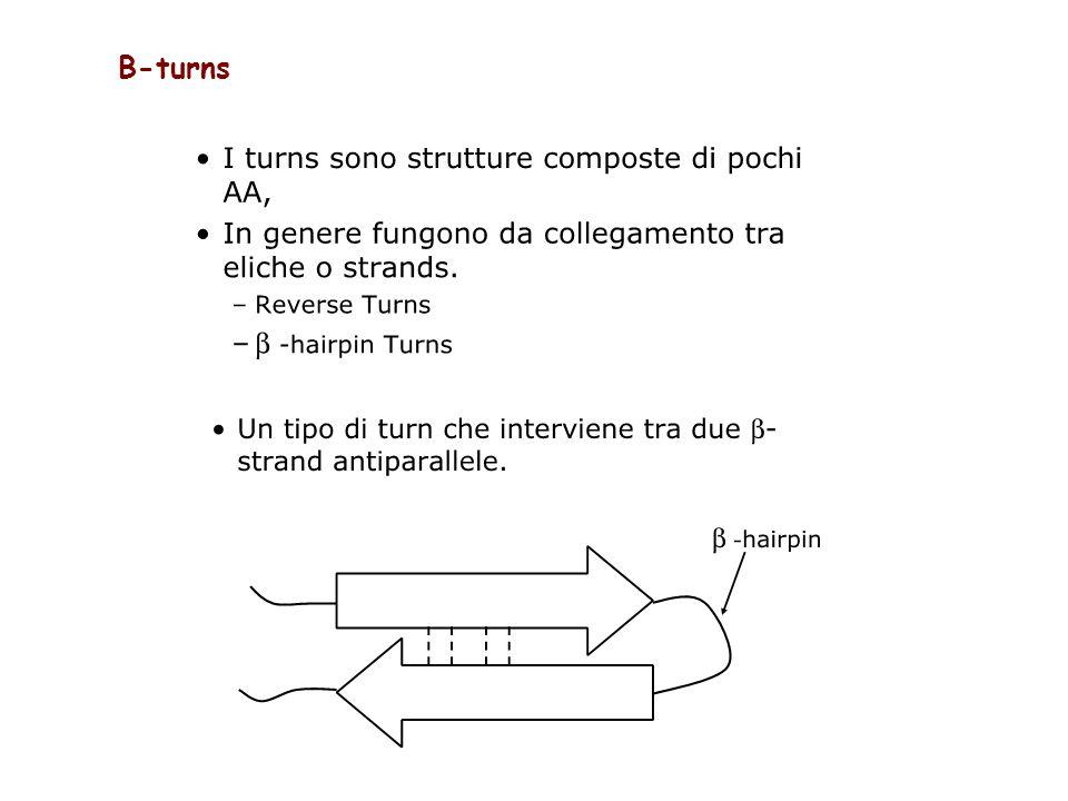 Β-turns