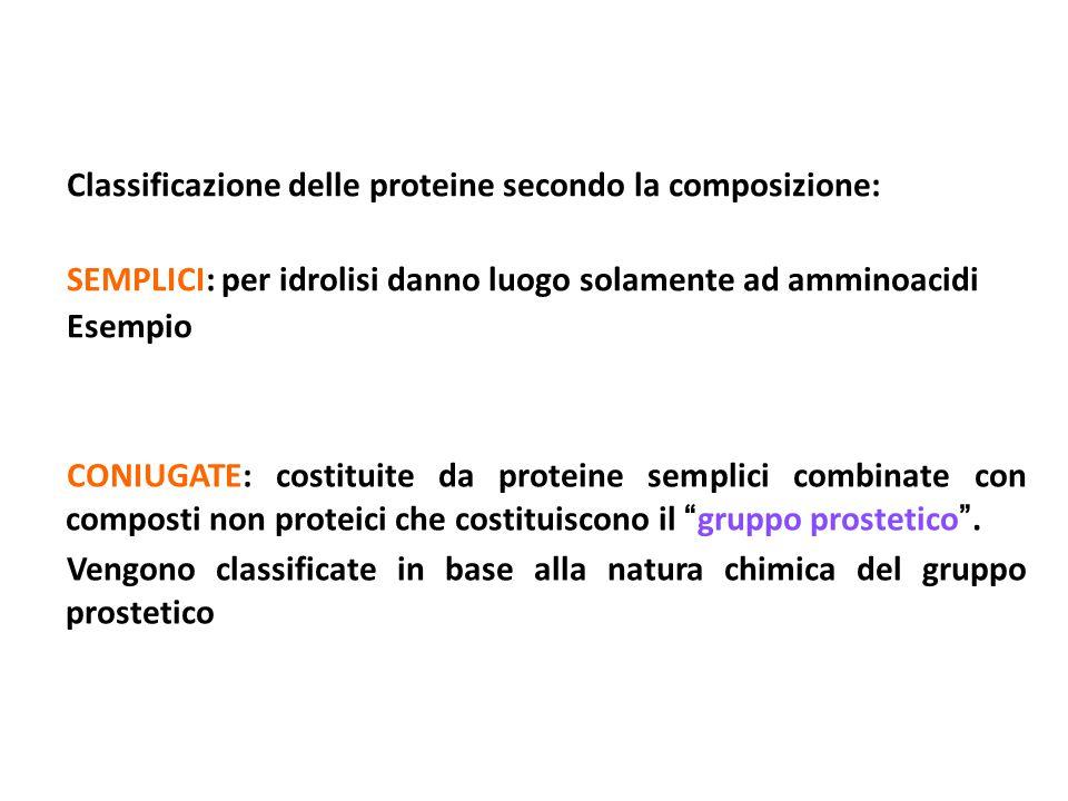 Classificazione delle proteine secondo la composizione: