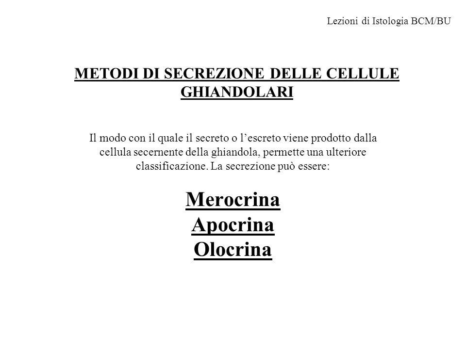 METODI DI SECREZIONE DELLE CELLULE GHIANDOLARI