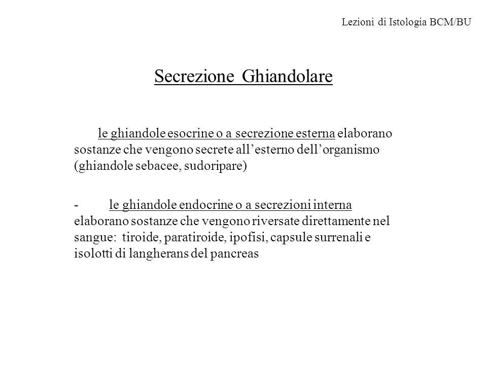 Secrezione Ghiandolare