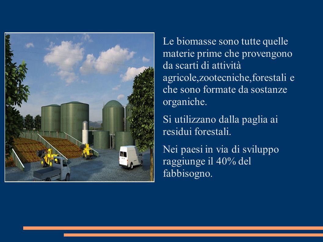 Le biomasse sono tutte quelle materie prime che provengono da scarti di attività agricole,zootecniche,forestali e che sono formate da sostanze organiche.