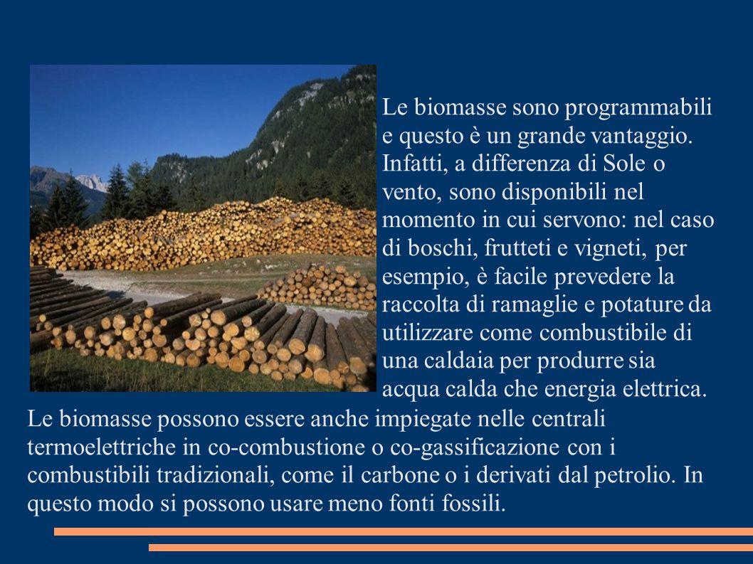 Le biomasse sono programmabili e questo è un grande vantaggio