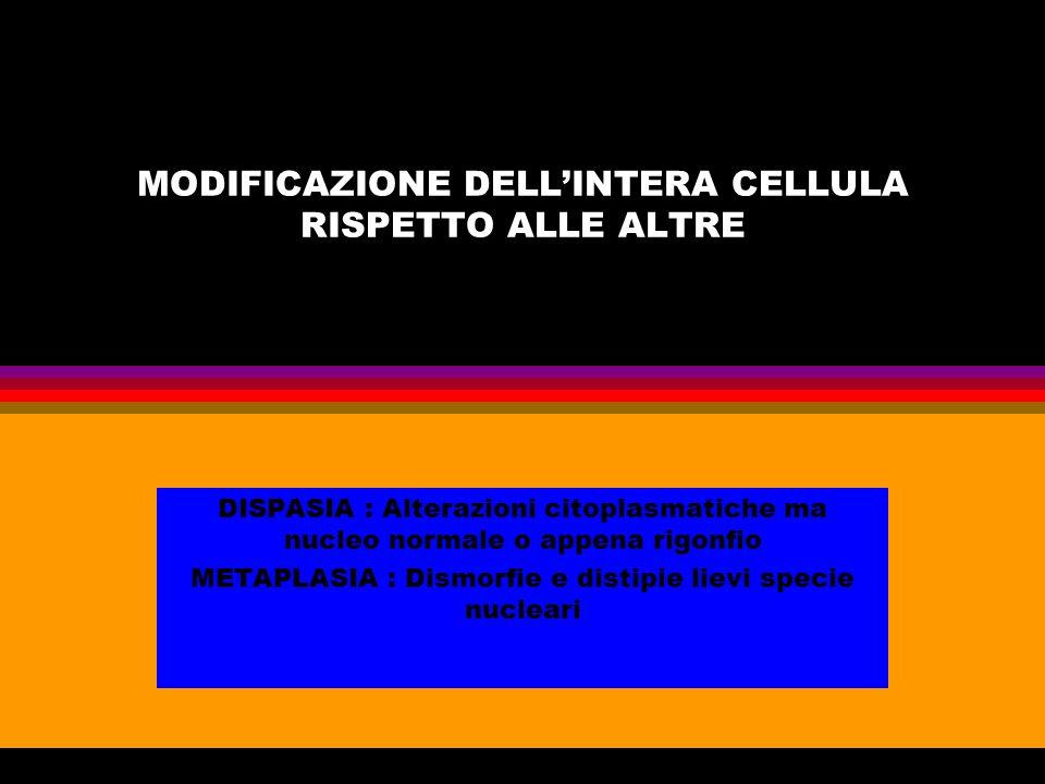 MODIFICAZIONE DELL'INTERA CELLULA RISPETTO ALLE ALTRE