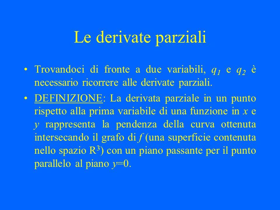 Le derivate parziali Trovandoci di fronte a due variabili, q1 e q2 è necessario ricorrere alle derivate parziali.