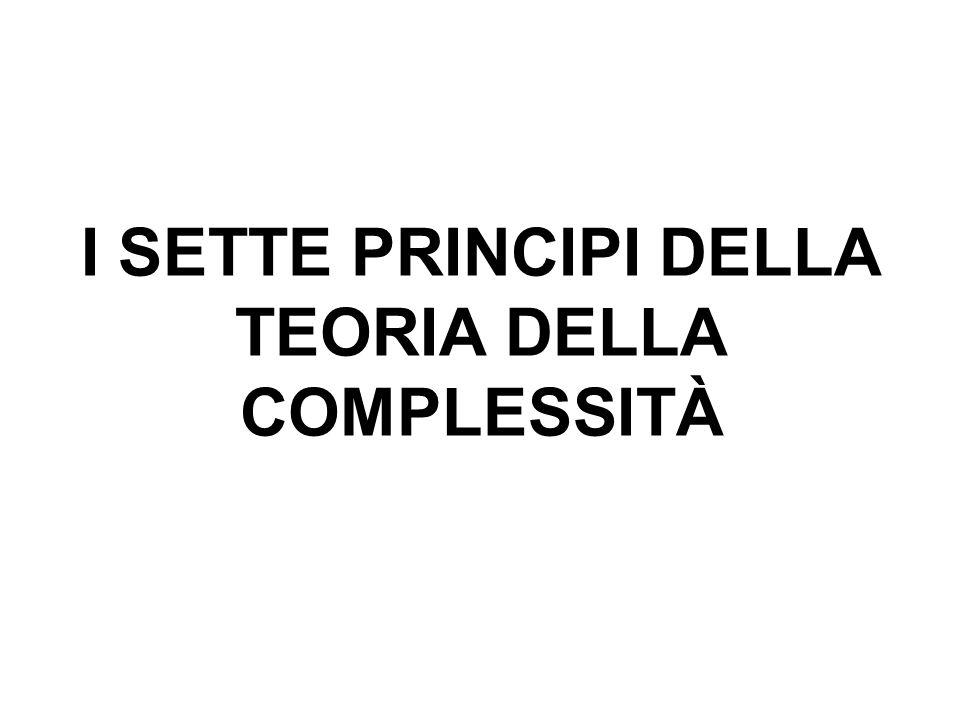 I SETTE PRINCIPI DELLA TEORIA DELLA COMPLESSITÀ