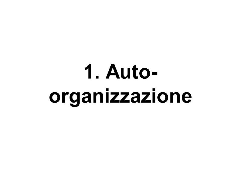 1. Auto-organizzazione