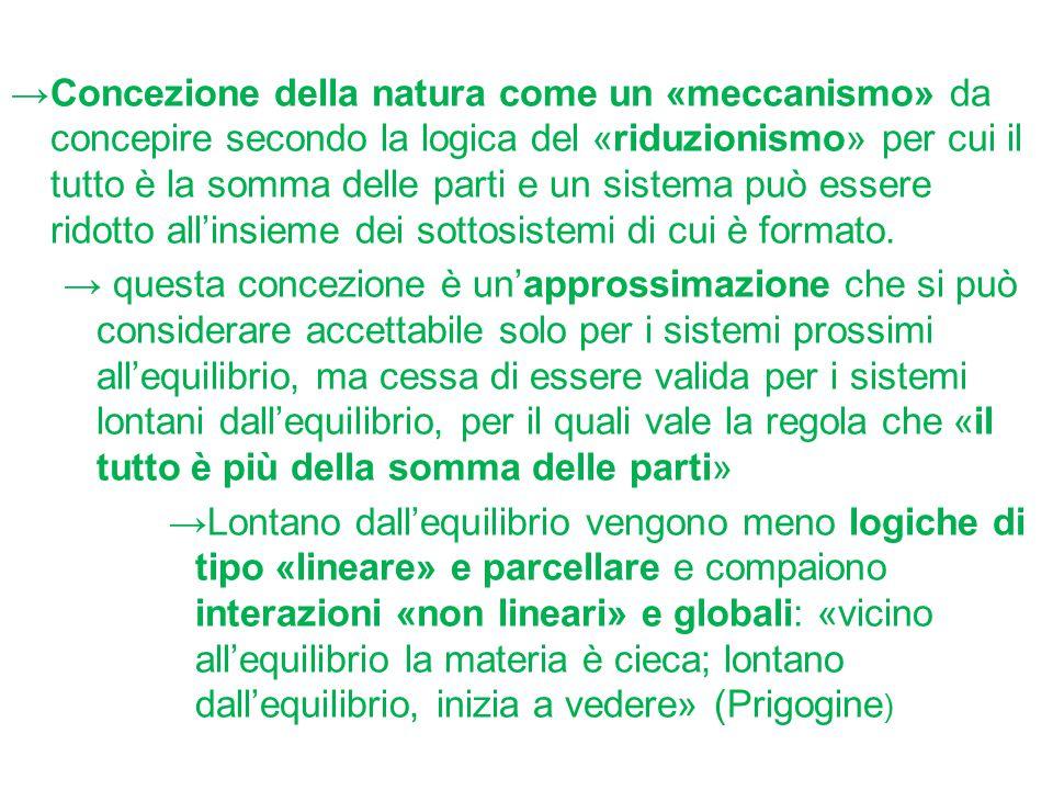 Concezione della natura come un «meccanismo» da concepire secondo la logica del «riduzionismo» per cui il tutto è la somma delle parti e un sistema può essere ridotto all'insieme dei sottosistemi di cui è formato.