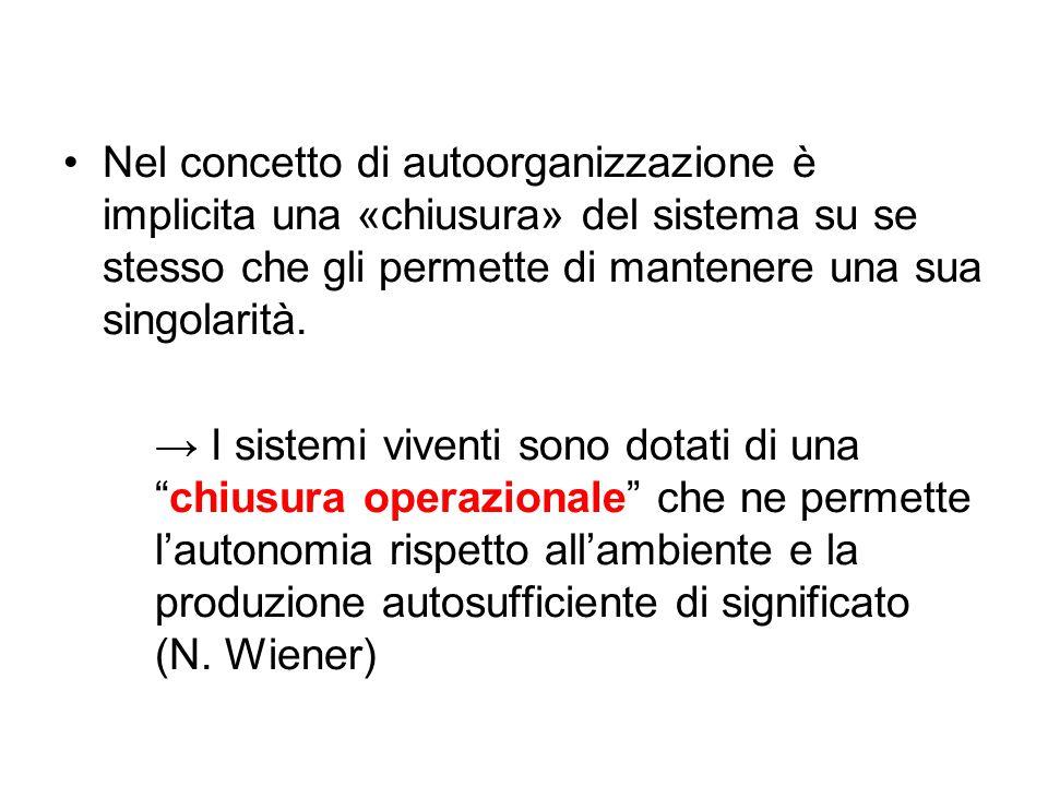 Nel concetto di autoorganizzazione è implicita una «chiusura» del sistema su se stesso che gli permette di mantenere una sua singolarità.