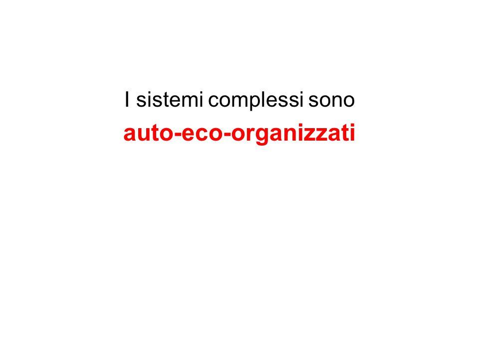 auto-eco-organizzati