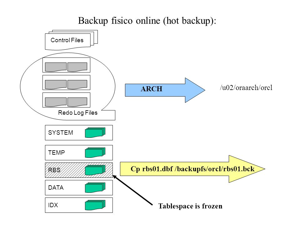 Backup fisico online (hot backup):