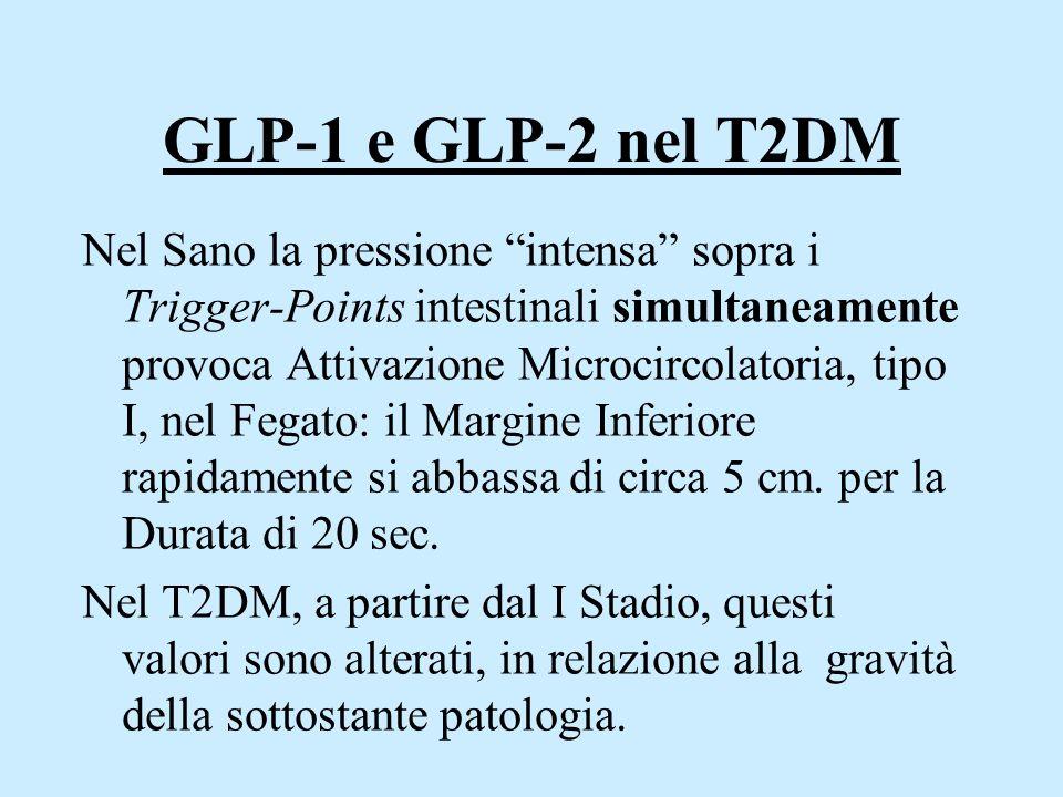 GLP-1 e GLP-2 nel T2DM