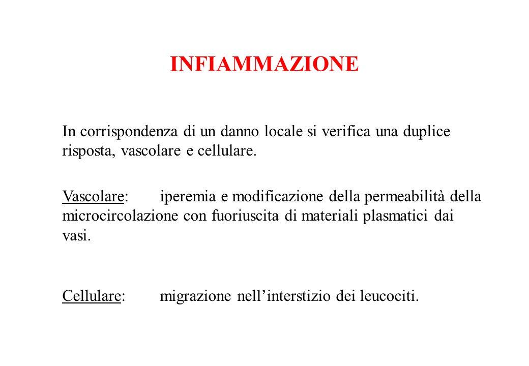 INFIAMMAZIONE In corrispondenza di un danno locale si verifica una duplice risposta, vascolare e cellulare.