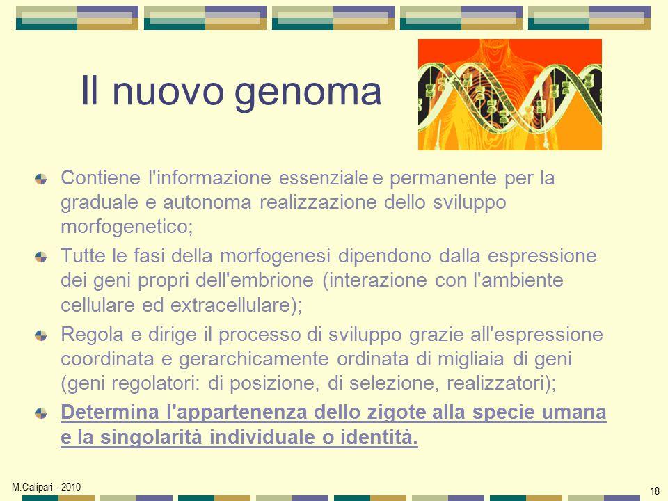 Il nuovo genoma Contiene l informazione essenziale e permanente per la graduale e autonoma realizzazione dello sviluppo morfogenetico;